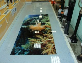Устройство наливных полов для торговых центров